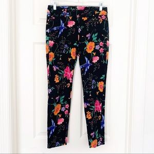 Old Navy Pixie Pants Black Tropical Bird Floral